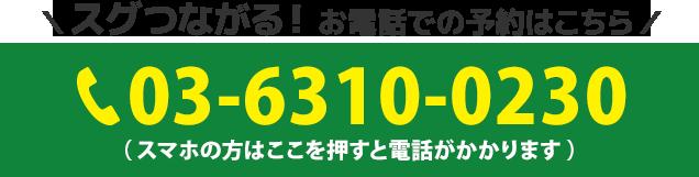 電話番号:03-6310-0230